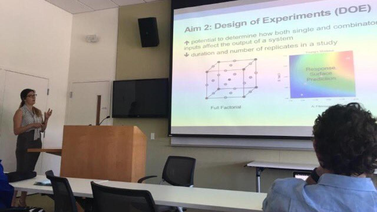 Evelyn c murphy phd dissertation